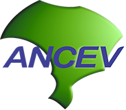 ancev logo coworking brasilia